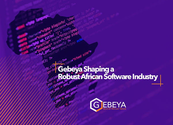 African Software Industry